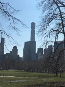 New York City from a park in spring