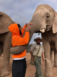 Being hugged by an elephant in Western Cape Town, 2019.